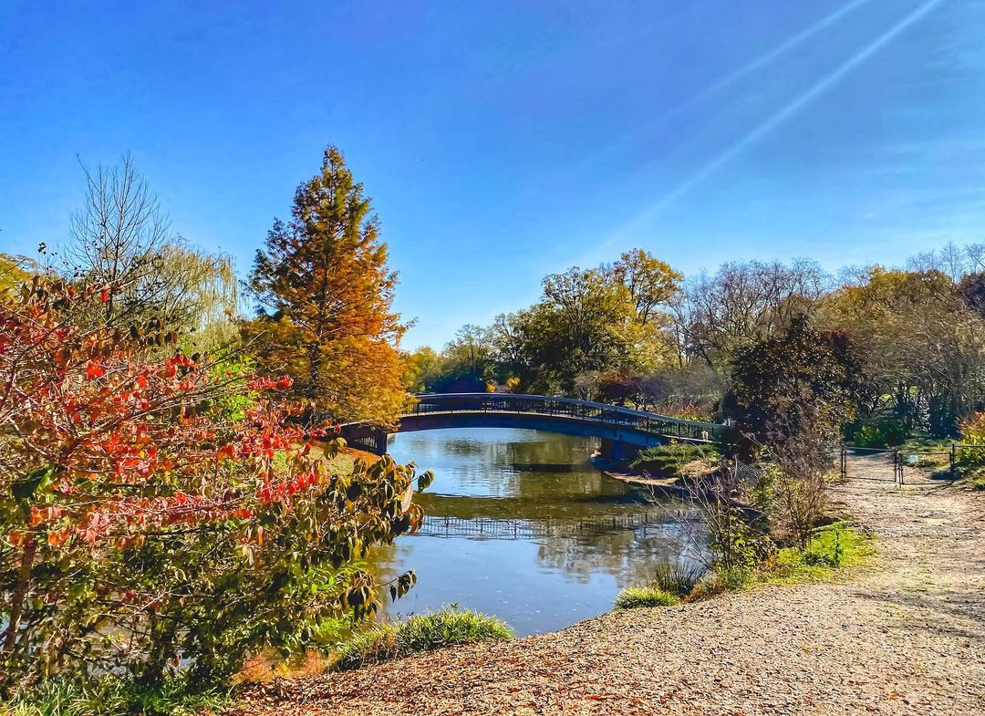 Pullen Park   Affordable Family Fun